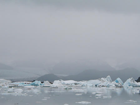 4Icebergs on a foggy Alsek Lake