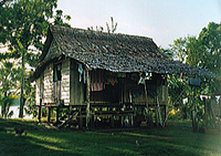 Author's house in Baraulu, Solomon Islands