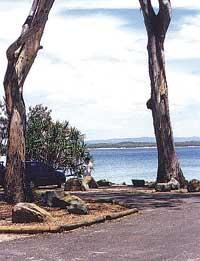 Noosa Heads Public Trail